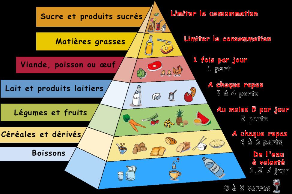 Healthy Food Pyramid Explained